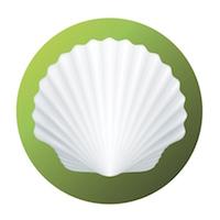 Shell met brains en billions op naar een duurzaam energiebedrijf