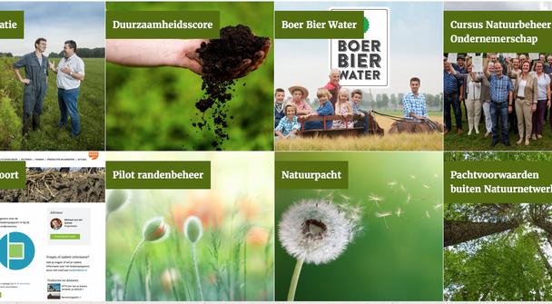 Brabant verduurzaamt met Groen Ontwikkelfonds, Klimaatschap en zonneweiden.